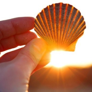 5 Reasons Why The Sun Is Our Mind's Best Friend